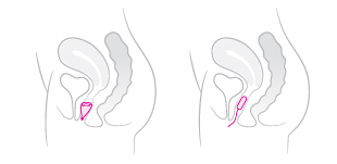 copa menstrual farmaconfianza