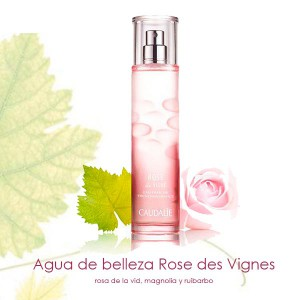 Rose des Vignes en Farmaconfianza
