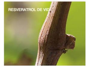 caudalie-resveratrol-de-vid-farmaconfianza