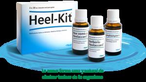 Heel terapia detoxificación en Farmaconfianza