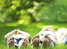Como prevenir las picaduras de Insectos | Blog Farmaconfianza